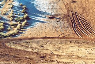 Tracks, Moab, Utah
