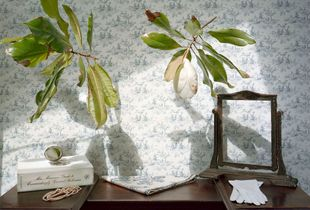 Still Life with Magnolia and Pearls