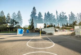 2016 Edith Landels Elementary School, Mountain View, CA 94041