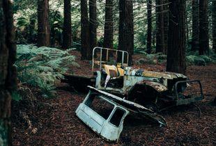 Forgotten car