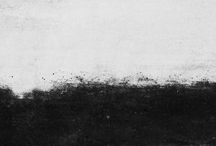 Il y a des régions qui doivent rester obscures. Ni floues, ni ignorées mais simplement privées de la lumière des mots (Yasmina Reza) (Some regions must remain obscure. Neither blurred nor ignored, just merely deprived of words' light )