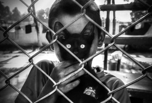 Cat's Eyes.