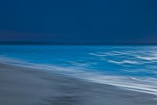 Waves #D105881
