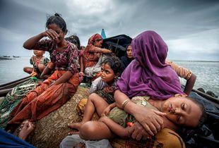 Rohingya Refugee in Bangladesh