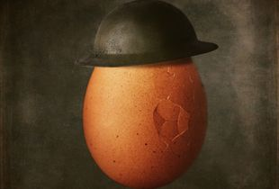 Shell Shocked. Portrait of an Egg in Brodie Helmet