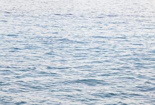 Caribbean Sea • Water II