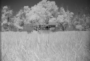 Cabin fever - Hüttenzauber
