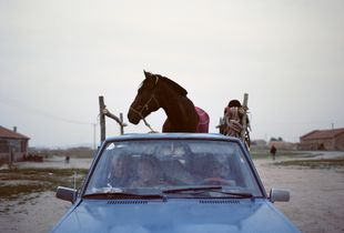 A Horse on a Pickup. © Li Wei, Winner, LensCulture Emerging Talent Awards 2016.