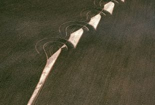 "Ploughed field, wheatbelt, Western Australia, Australia, from the series ""Abstract Earth"" © Richard Woldendorp"