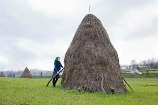 Adjusting a Haystack