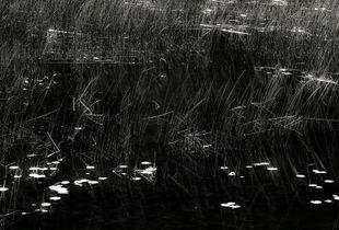 The Tarn 46, © Alan Henriksen