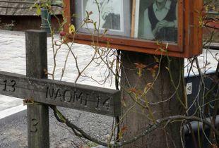 MONUMENT NR.6