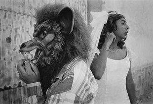 Bride and wolf, San Martin Tilcajete