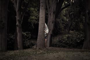 Woodland - Lost