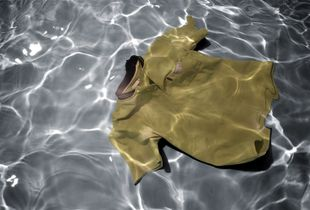 "From the series Drifting Away, printed glass, 60x35,2""  © Erika Diettes"