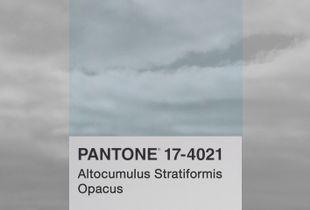 Altocumulus Stratiformis Opacus