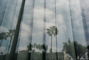 Reflection on Hollywood Blvd.