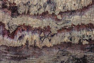 wheathered wood 1