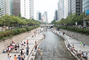 The Chonggye artificial stream in Seoul provides some refreshment to city dwellers on a hot summer's day.