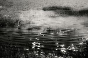 Upper Hadlock Pond 19, © Alan Henriksen