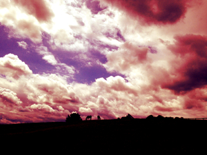 Horse Farm and Clouds