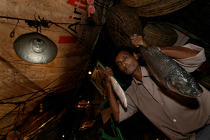 The fish market. Kolkata, India
