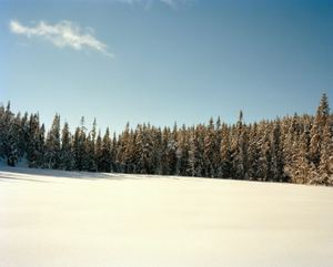 From Winterland