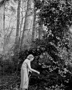 Margaret With Giant Camellia Japonica
