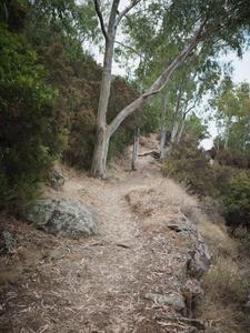 Quiet Isolation | Outland | Salina, Sicily | No. 5
