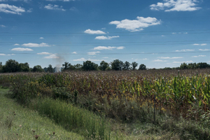 Brush Fire (Rear View), Greensburg, Indiana, 2014