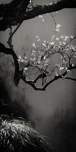 Suzhou Branch