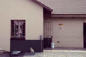 white shelter_03