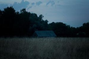 After Dark-1