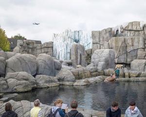 Hagenbeck - Tierpark, Deutschland (2014)