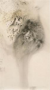 Untitled Work of Fire .01-06-13 Unique gunpowder generated gelatin silver print.