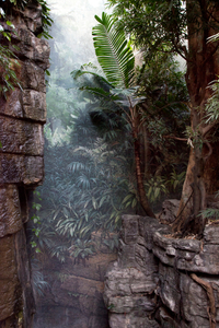 Jungle World, New York City, USA