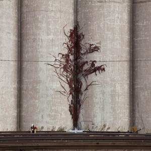 Grain Elevator © Eddee Daniel