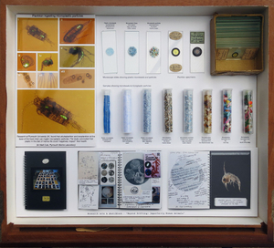 Installation drawer. The original antique specimen drawer highlights the connection with plastic, showing images of plankton ingesting plastic particles, and research/sketch books spreads. Microscope slides and test tubes show samples of micro plastic particles recovered from oceans around the world, alongside micro beads collected from toothpaste and facial scrubs.