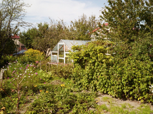 Greenhouse in allotment gardens bordering the Majdanek concentration camp site.