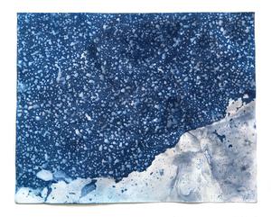 "Littoral Drift Nearshore #409 (Kohler Center, Sheboygan, WI 01.07.16, Mixed Precipitation and Border Ice)19x24"", Unique Cyanotype"