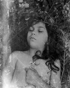 Silence of Helena                       © Paul Thulin