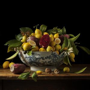 Lemons and Prickly Pear, 2013 © Paulette Tavormina, Robert Klein Gallery