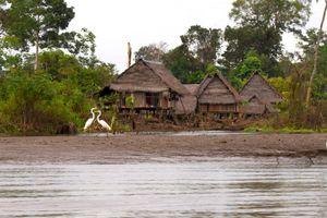 Palafitos in the Amazon - © Adel Korkor
