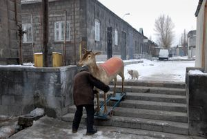 Gyumri, Armenia, 2007 © Nick Hannes