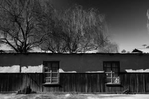 White Shelter #1