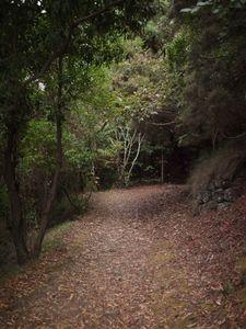 Quiet Isolation | Outland | Salina, Sicily | No. 3