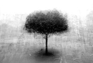 stadtbaum#13