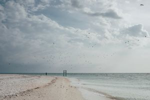 A young girl alone with the seagulls in the sky of Outer Clam Bay. Naples, Florida.
