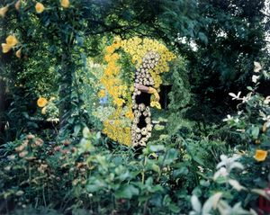 'Garden Trillogy I' from the series Conversations with my mother