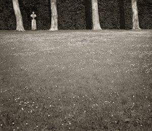"Meadow of Columns, Boboli Gardens, 18.5x16"" Platinum Palladium © Beth Dow"